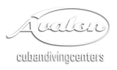 logo-avalon-white-shadow
